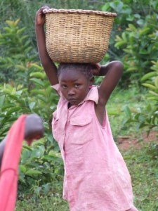 Girl_with_Basket_on_road_to_Maseno-338